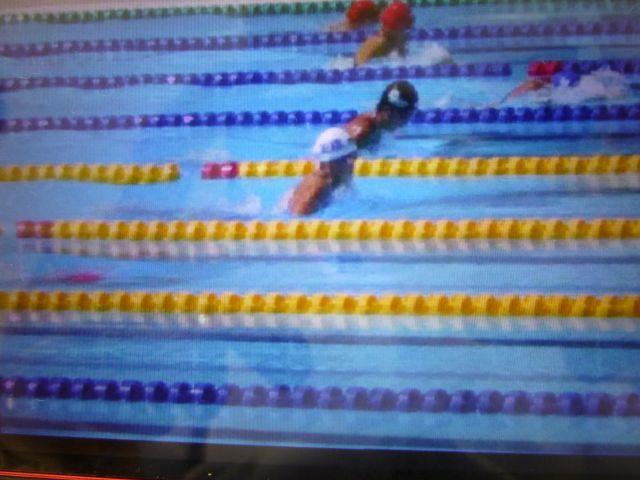 水泳.jpg